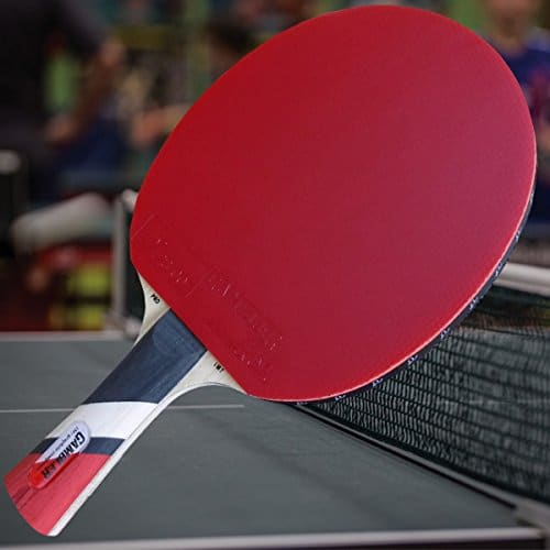 Top 10 Best Ping Pong Paddles Under 50 Tested Racquets