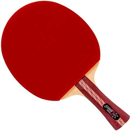 DHS A4002 Ping Pong Paddle